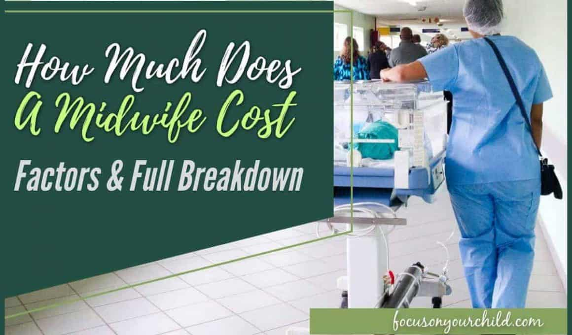 How Much Does a Midwife Cost Factors & Full Breakdown