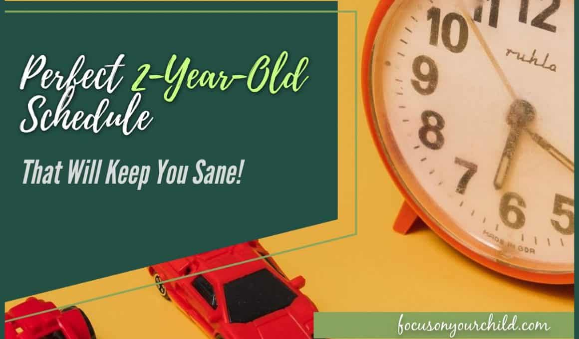 Perfect 2-Year-Old Schedule That Will Keep You Sane!